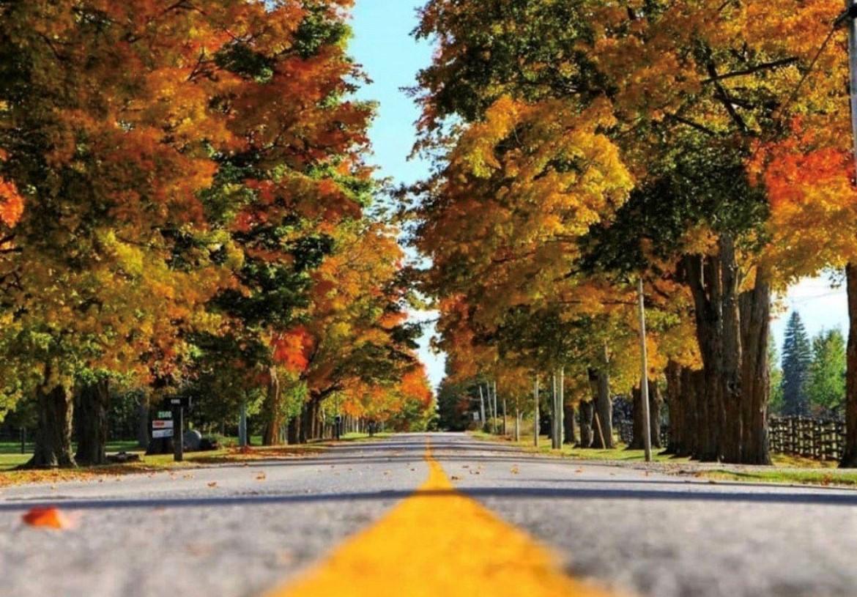 Fall Road in Durham Region