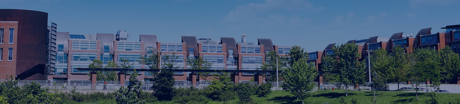 Image of Ontario Tech University
