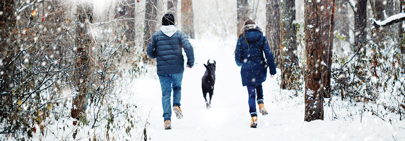 People walking their dog in the woods in the winter.