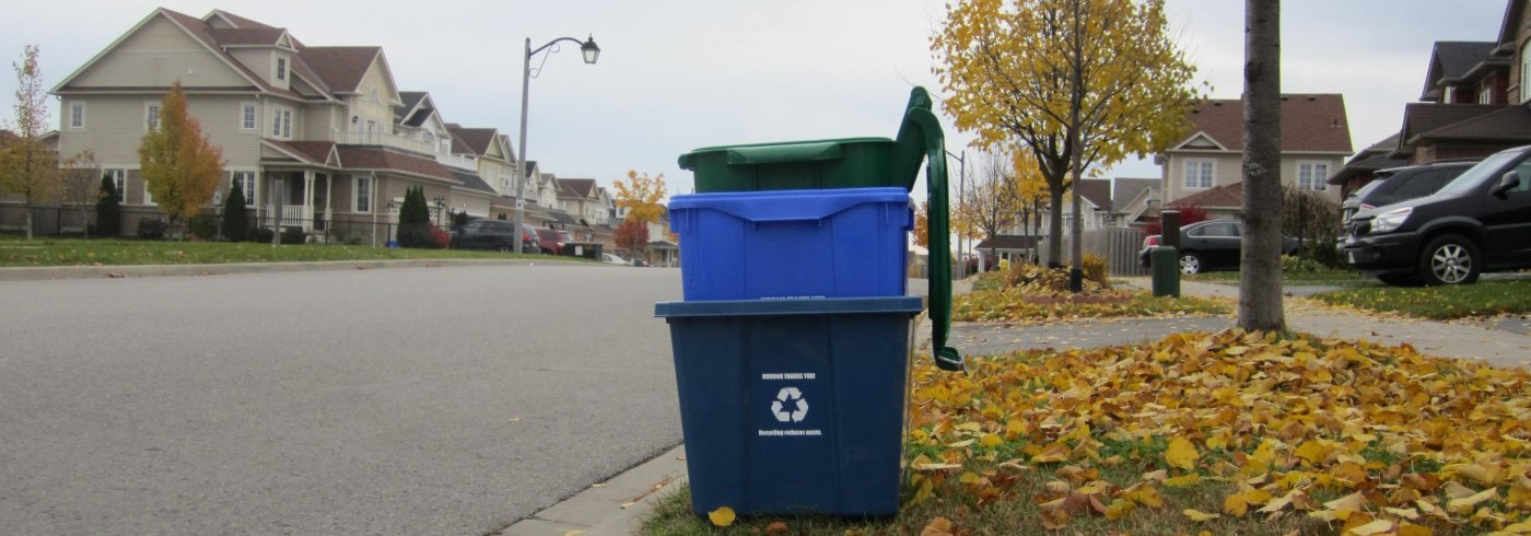 Stacked green bin and blue boxes at street curb