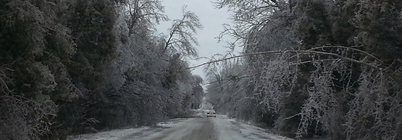 Ice covered road and trees
