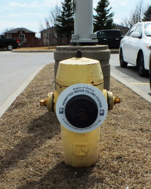 Hydrant with ring