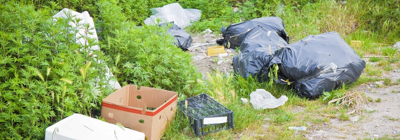 Garbage bags and cardboard boxes laying in a grassy area